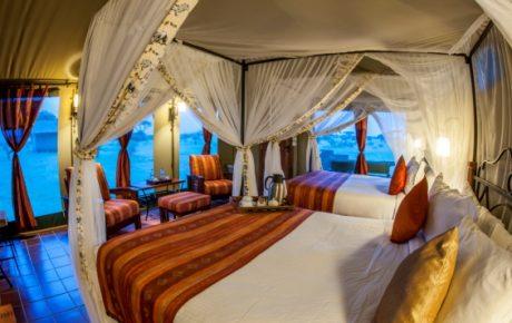6 Top Cream Luxury classic Safari